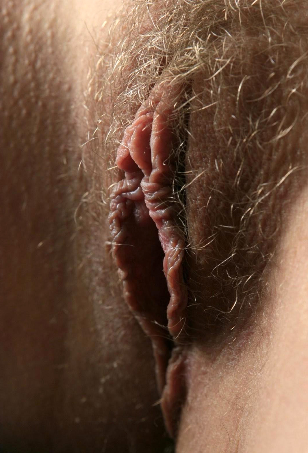 sexy hairy pussies get used to up tumblr